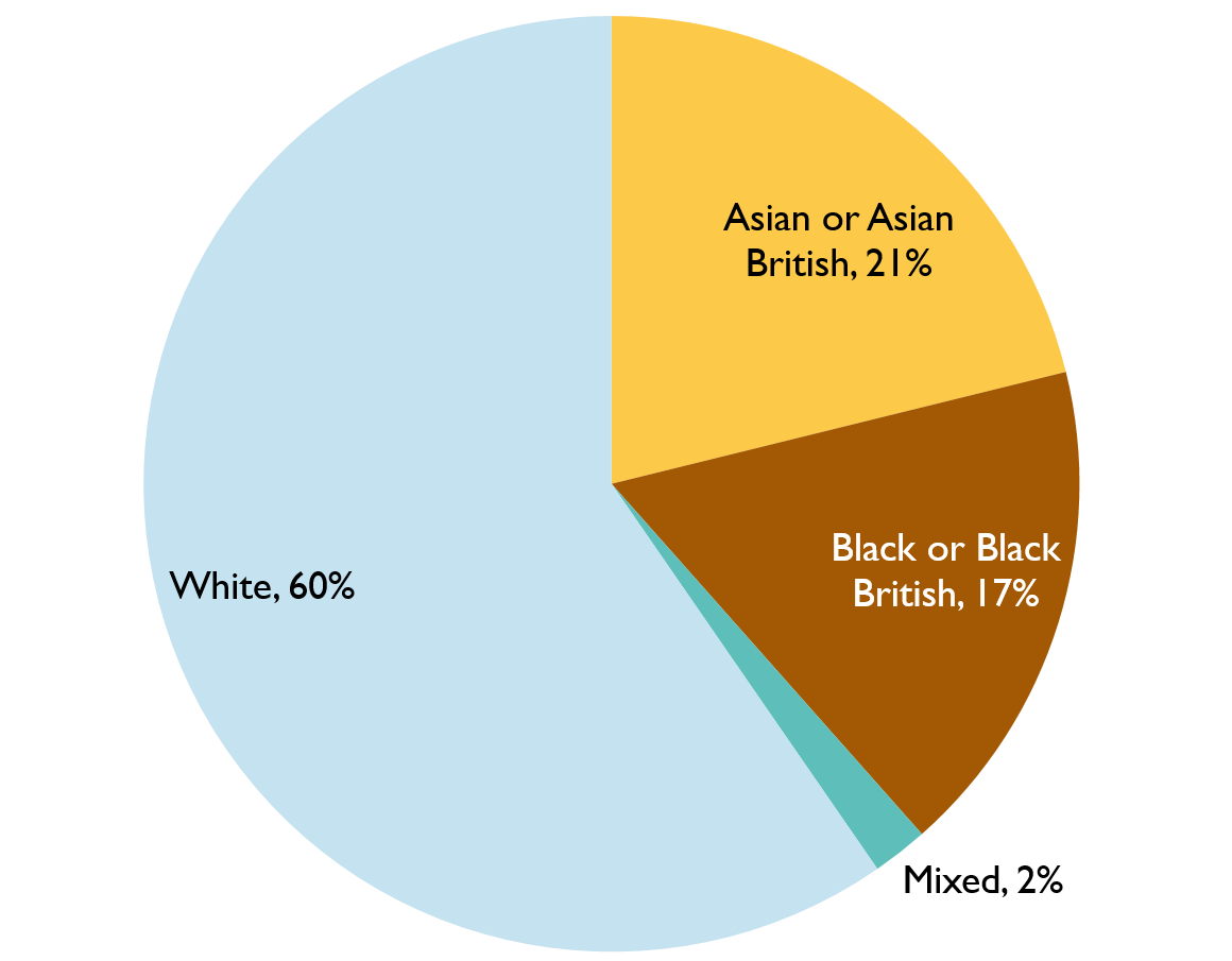 Pie chart showing representation of ethnic minorities in the Inquiry, 2020. Described under 'Description for Chart 3'.